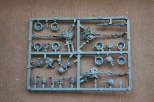 Elementi contenuti nella scatola Night Goblin Fanatics