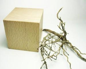 Materiali per basetta : plinto e rametti